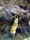 Декоративные искусственные гроты и пещеры