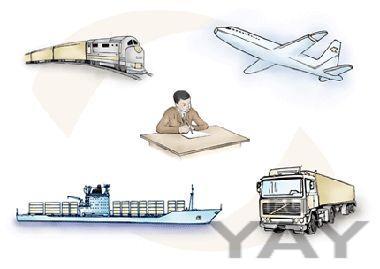 Транспортная лицензия екатерина владимировнав краткие сроки.