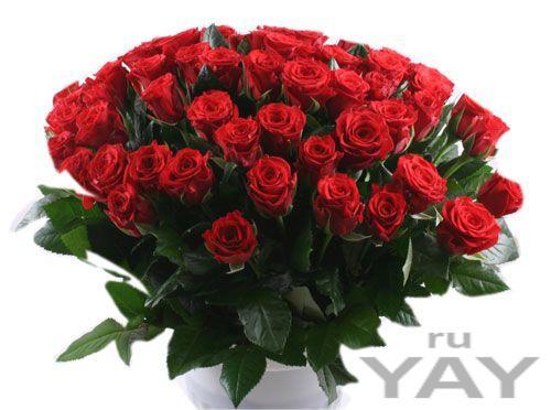 Доставка цветов jin66ru