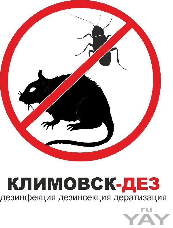 Выведение тараканов  бронницах серпухово наро-фоминске