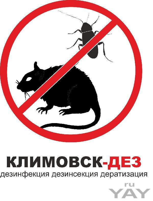 Эффективная борьба с тараканами  троицке лыткарино