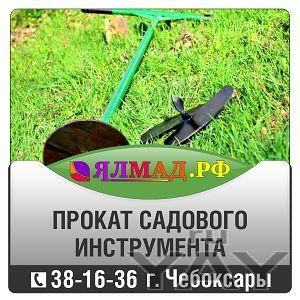 Прокат, аренда садового инструмента, инвентаря. дачный инструмент и инвентарь напрокат.