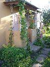 Продам плодоносящий сад Челябинск